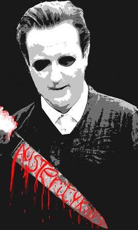 Camerons Austerity