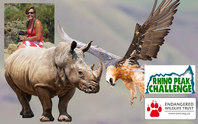 The race is on, this World Rhino Day!